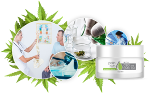 Cellista-Pain-Run-with-CBD-and-EMU-Oil-Review